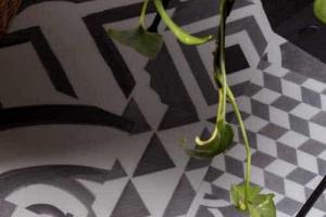 Tarkett – Ambienta Studio Design